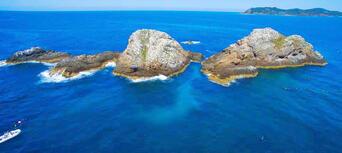 Byron Bay Snorkelling Tours Thumbnail 5