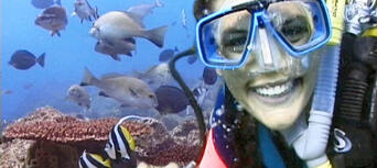 Introductory Scuba Dive Course in Byron Bay Thumbnail 2
