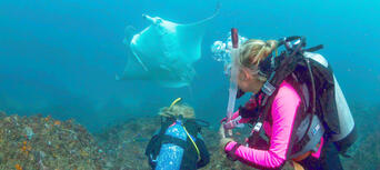 Introductory Scuba Dive Course in Byron Bay Thumbnail 4