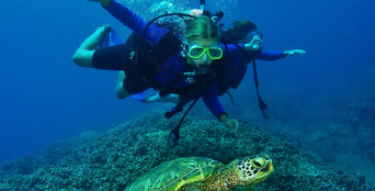 Introductory Scuba Dive Course in Byron Bay Thumbnail 1