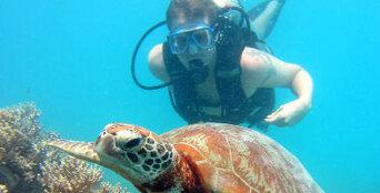 Scuba Diver 2 Day Course in Byron Bay Thumbnail 1