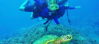 Open Water Diver Course in Byron Bay Thumbnail 5