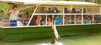 Hartley's Crocodile Adventures Half Day Tour from Cairns Thumbnail 1