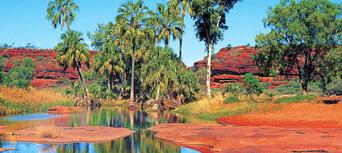 Palm Valley and 4WD Safari Tour Thumbnail 4