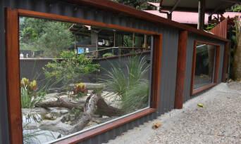 Kuranda Koala Gardens Entry Tickets Thumbnail 6