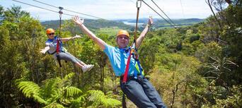 Waiheke Island Ecozip Adventures Zip Line Tour Thumbnail 3