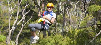 Waiheke Island Ecozip Adventures Zip Line Tour Thumbnail 4
