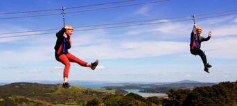 Waiheke Island Ecozip Adventures Zip Line Tour Thumbnail 5