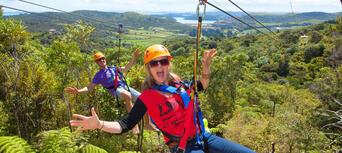 Waiheke Island Ecozip Adventures Zip Line Tour Thumbnail 6
