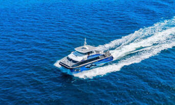 Morning Whale Watching Cruise Augusta Thumbnail 1