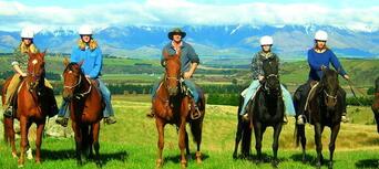 2.5 Hour Horse Riding Tour in Te Anau Thumbnail 1