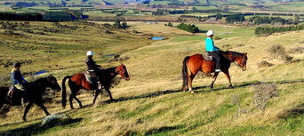 2.5 Hour Horse Riding Tour in Te Anau Thumbnail 4