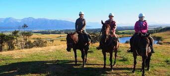 2.5 Hour Horse Riding Tour in Te Anau Thumbnail 5