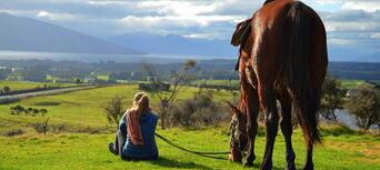 2.5 Hour Horse Riding Tour in Te Anau Thumbnail 6