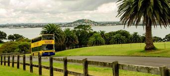 Auckland Hop On Hop Off Explorer Thumbnail 3