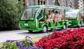 Punting with Garden Tour or Gondola Combo Thumbnail 1