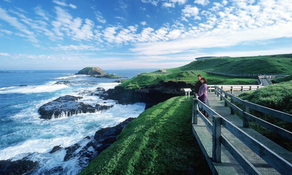 Phillip Island Nature and Wildlife Tour