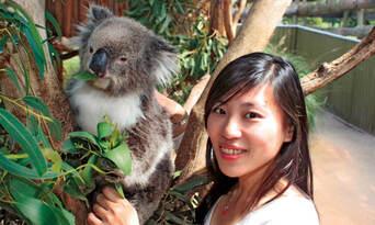 Phillip Island Nature and Wildlife Tour Thumbnail 6