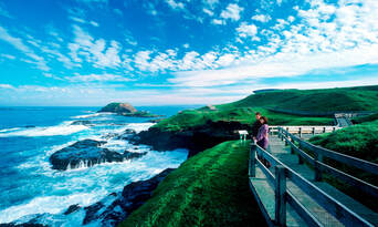 Phillip Island Penguins Day Tour Thumbnail 3