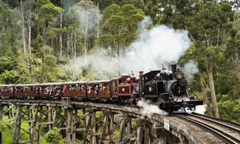 Puffing Billy and Dandenongs Half Day Tour Thumbnail 3