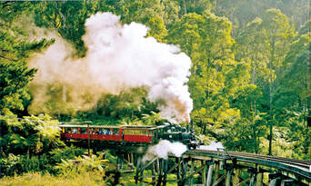 Puffing Billy and Yarra Valley Wineries Day Tour Thumbnail 2