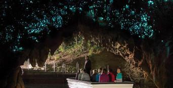Waitomo Glowworm Express Tour return Rotorua Thumbnail 1