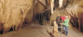 Waitomo Glowworm Caves Admission and Guided Tour Thumbnail 2