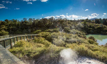 Te Puia Guided Tour with Steambox Hangi Lunch Thumbnail 5
