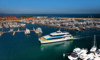 Rottnest Island Guided Bus Tour and Ferry Combo Thumbnail 5