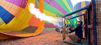 Hunter Valley 1-hour Hot Air Balloon Flight Thumbnail 2