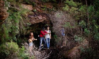 Blue Mountains, Cruise & Wildlife Park Tour from Sydney Thumbnail 2