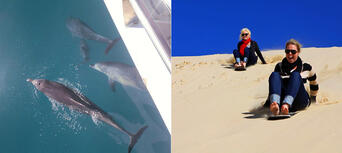 Port Stephens Day Tour from Sydney Thumbnail 1