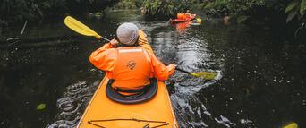 Milford Sound Kayaking Tour Thumbnail 2