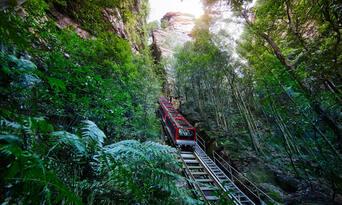 Blue Mountains Lyrebird Pass Thumbnail 3
