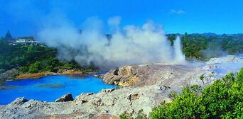 Bay of Islands with Rotorua and Waitomo Combo Thumbnail 6