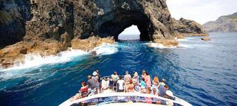 Hobbiton Movie Set and Bay Of Islands Combo Pass Thumbnail 2