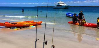 Half Day Fraser Island Beach and BBQ Cruise Thumbnail 3
