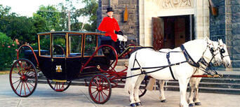 Melbourne Horse and Carriage Tours Thumbnail 3