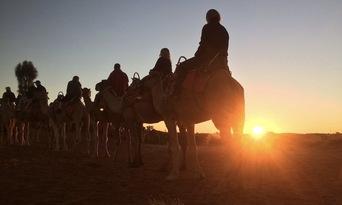Uluru Sunrise Camel Ride Tour Thumbnail 3