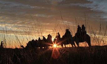 Uluru Sunrise Camel Ride Tour Thumbnail 4