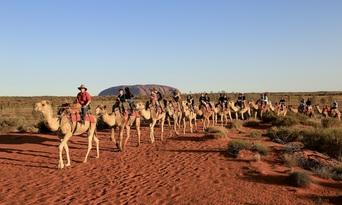 Uluru Sunrise Camel Ride Tour Thumbnail 5