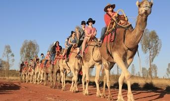 Uluru Sunrise Camel Ride Tour Thumbnail 6