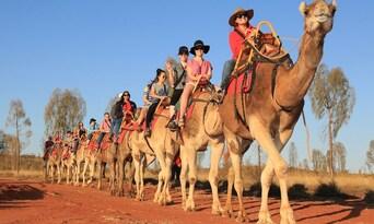 Uluru Express Camel Tours Thumbnail 2
