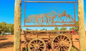 Uluru Express Camel Tours Thumbnail 3