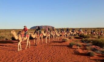 Uluru Express Camel Tours Thumbnail 5