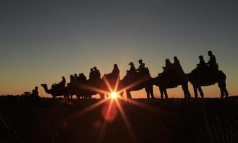Uluru Sunset Camel Ride Tour Thumbnail 5