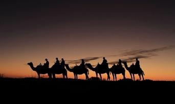Uluru Sunset Camel Ride Tour Thumbnail 6