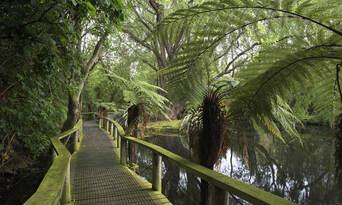 Willowbank Wildlife Reserve Tickets Thumbnail 6