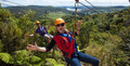 Waiheke Island Zip Line Tour with Wine and Dine Package Thumbnail 1