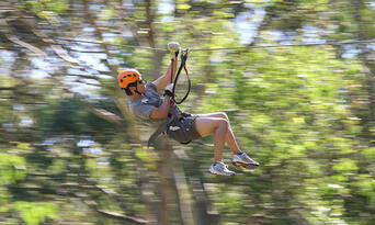 TreeTop Adventure Park Central Coast Thumbnail 2